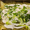 Green Enchiladas with Melted Cheese